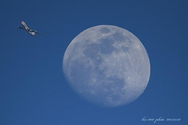 月が大き過ぎ !