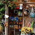 Photos: Gardener
