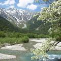 Photos: 春の上高地