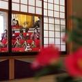 Photos: 雛段飾り