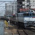 Photos: EF65 2097+コキ