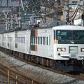 Photos: おはようライナー新宿185系0番台 A4編成