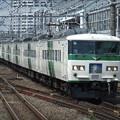Photos: 湘南ライナー185系0番台 C5+A3編成