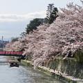 Photos: 平安神宮 お堀