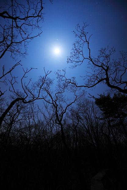 月と木星の接近の日に