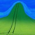 Photos: 緑の丘