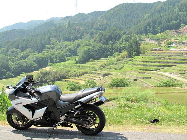 写真: IMG_9453 坂折の棚田