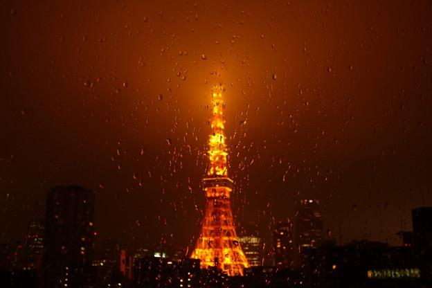 Photos: 雨粒模様…夜