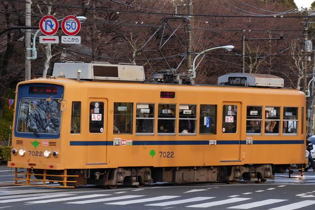 都電荒川線7022号車(2015.3.24)