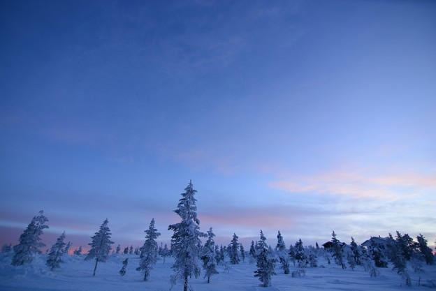 北極圏の景色