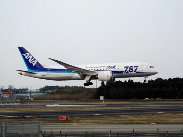 245B787-8JA808A成田150322