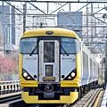 Photos: 春満載の行楽列車2