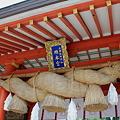 写真: 熊野速玉大社