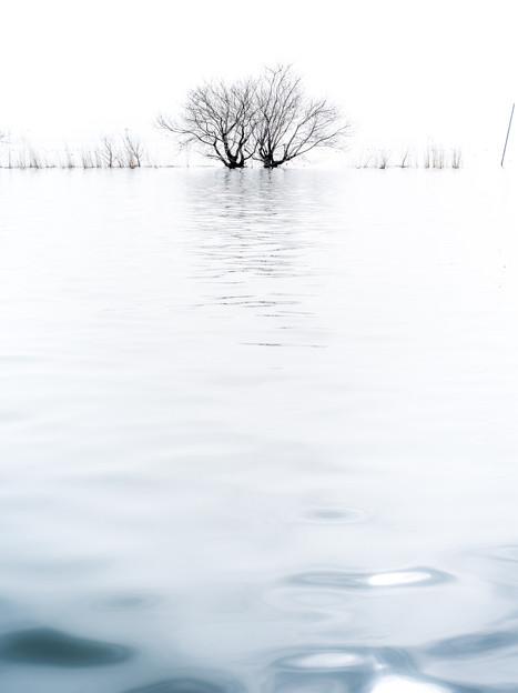 白空揺れる波