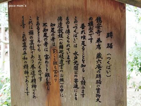 龍安寺 つくばい2015年01月11日_P1110068