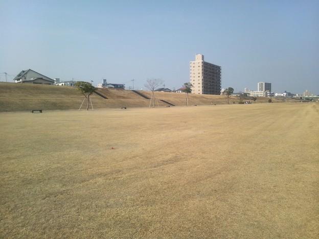 大淀川河川敷の公園4