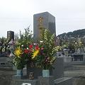写真: 春分の日・墓参り3