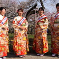 Photos: 水戸の梅大使 1