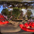 伊東市 第3回伊東MAGARI雛 佛現寺境内 360度パノラマ写真(2) HDR