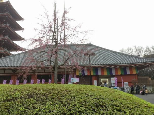 伝法院寺宝展示(庭園公開)の入り口