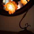 Photos: 薔薇の灯り