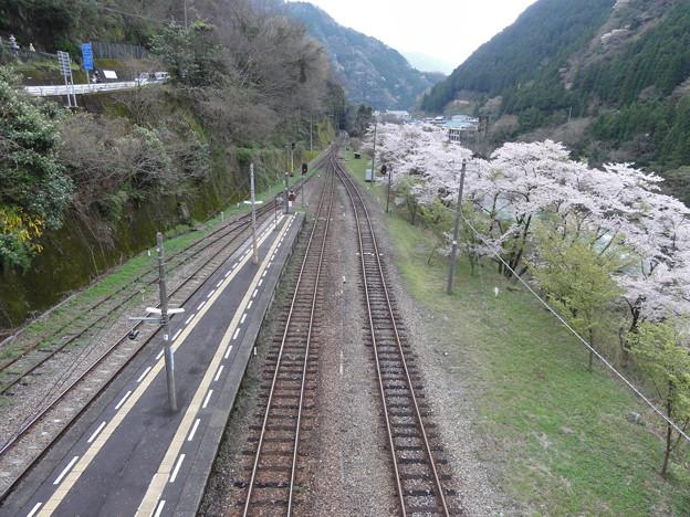 春の大歩危駅