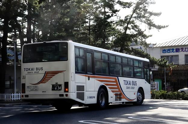 写真00043 東海バス、休暇村経由で石廊崎に
