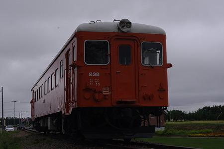 IMGP2449
