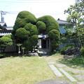 Photos: 蕨市歴史民族資料館 別館