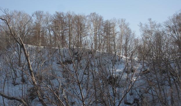 写真: 稜線