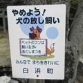 Photos: 犬糞 ~白浜町