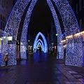 Photos: クリスマスに向かって