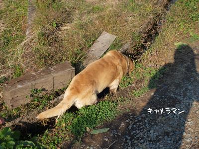 Photos: ねーちゃん