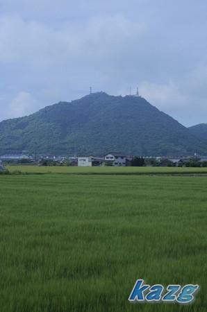 5月の麦畑の向こうに常山を望む