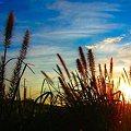 写真: 陽が昇るときII