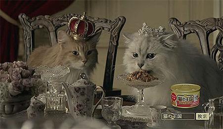 猫の王国CM02