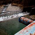 Photos: 渡良瀬川にかかる橋