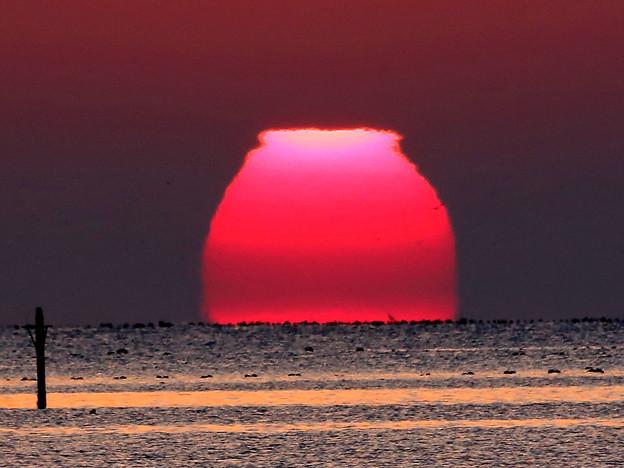 変形した太陽#3