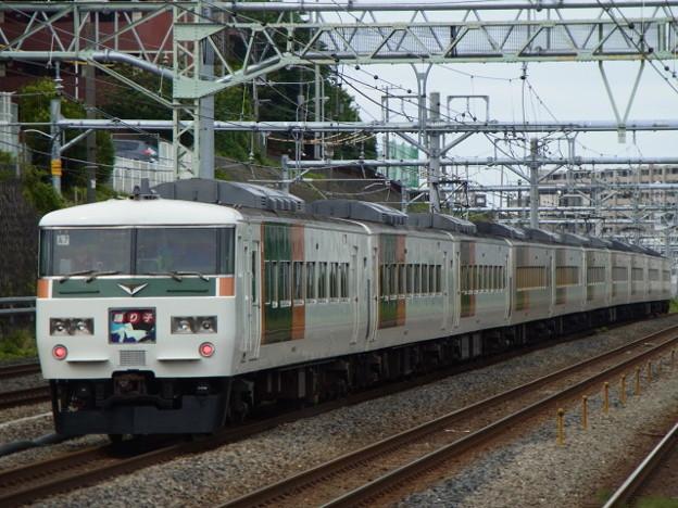 東海道本線 特急踊り子東京行 RIMG0693