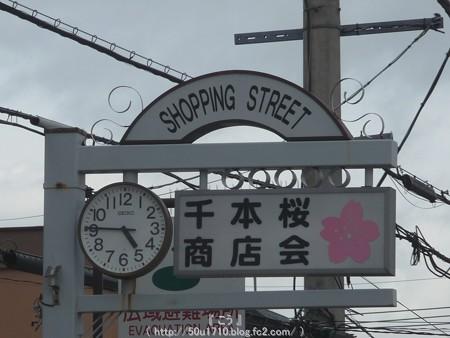 150403-桜 大和千本桜 (63)
