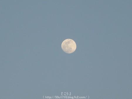 150502-お月さん (2)