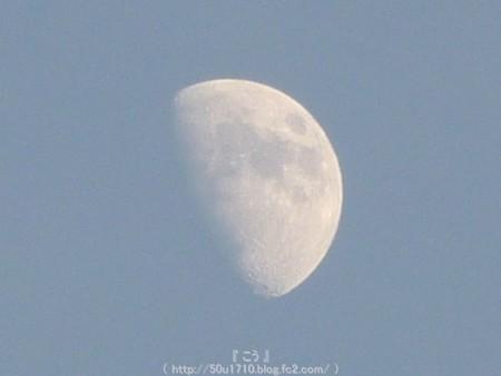 150527-お月さん (7)