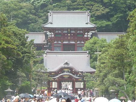 110624-鶴岡八幡宮 (4)