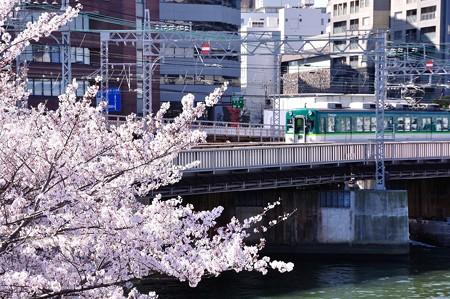 桜とおけいはん