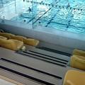 Photos: 今日はプール。600m位泳いだ。ちとやりすぎだった感じする。