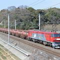 安中貨物 (EH500-11)