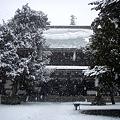 Photos: 円覚寺仏殿2-20120229