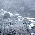 Photos: 円覚寺弁天堂より20120229