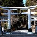 三峯神社の鳥居