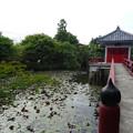 teramachi_028